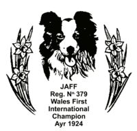 North Wales Sheep Dog Society